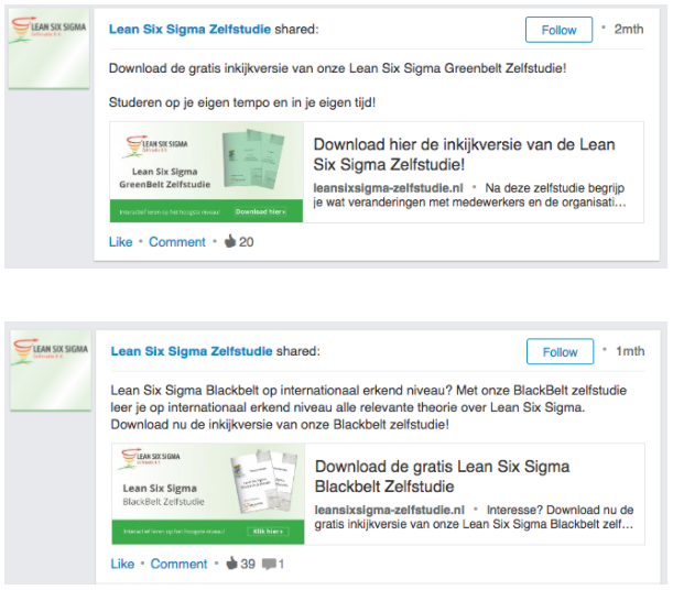 voorbeeld linkedin Lean Six Sigma