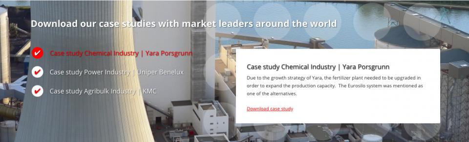 ESI Eurosilo case study cases